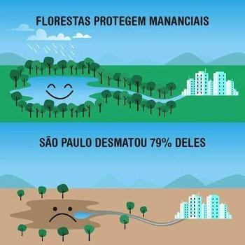 Facebook Ecosurf -desmatamento São Paulo