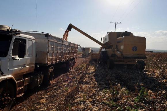 AgBr - Safra agrícola agricultura