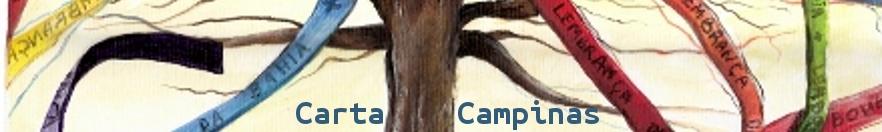camilaLagoeiro4banner01