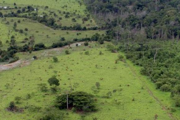 fazenda-mma-divulga-ebc-agencia-brasil