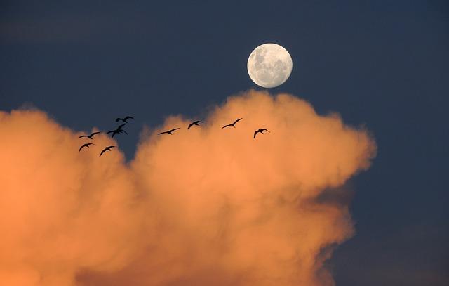 moon-323425_640