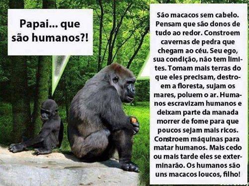 facebook de vanessa oliveira